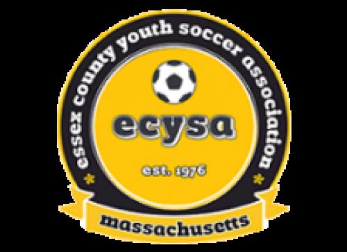 ecysa_logo_color_5.png