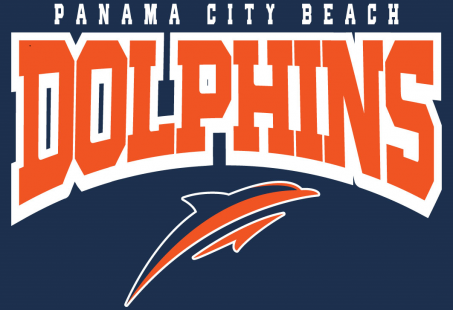 The Panama City Beach Dolphins