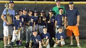 Tigers_Minors_TOC_winners_1.jpg